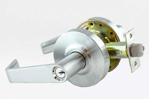 commercial-lever-lock-locksmith-lion